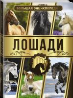Книга Большая энциклопедия. Лошади