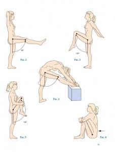 фото страниц Нижняя конечность. Функциональная анатомия #11