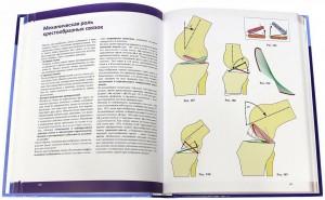 фото страниц Нижняя конечность. Функциональная анатомия #13