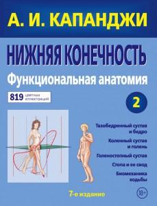 фото страниц Нижняя конечность. Функциональная анатомия #2
