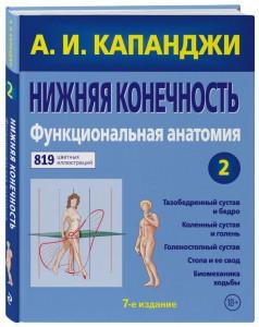 Книга Нижняя конечность. Функциональная анатомия