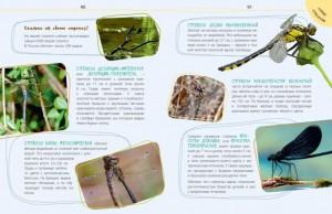 фото страниц Такие незнакомые эти насекомые #8