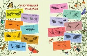 фото страниц Такие незнакомые эти насекомые #3