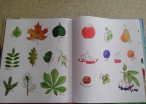 фото страниц Маленькие сказки про ёжиков #11