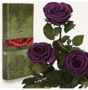 Подарок Три долгосвежих розы 'Фиолетовый аметист' в подарочной упаковке (5 карат на коротком стебле)