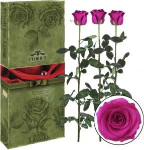 Подарок Три долгосвежих розы 'Малиновый родолит' в подарочной упаковке (5 карат на коротком стебле)