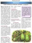 фото страниц Полный атлас лекарственных растений #2