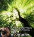 Книга Школа фотографии Майкла Фримана. Свет и освещение
