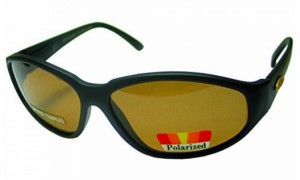 Очки поляризационные Salmo (S-2504)