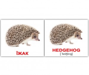 фото Розвиваючі міні-картки 'Вундеркінд з пелюшок' Дикі тварини/Wild animals (укр/англ) #4