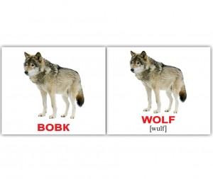 фото Розвиваючі міні-картки 'Вундеркінд з пелюшок' Дикі тварини/Wild animals (укр/англ) #3