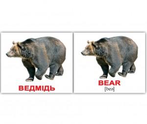 фото Розвиваючі міні-картки 'Вундеркінд з пелюшок' Дикі тварини/Wild animals (укр/англ) #2