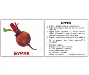 Розвиваючі міні-картки 'Вундеркінд з пелюшок' Овочі з фактами