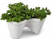 Подарок Горшок для цветов 'IVY planter' бело-зеленый