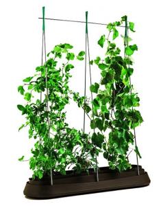 Подарок Грядка для растений с дном 'G-Row' коричневая