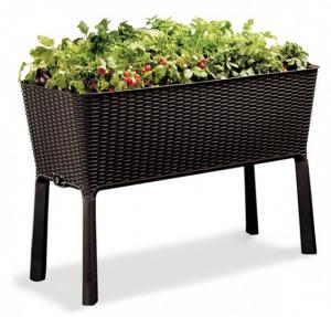 Подарок Грядка для растений 'Easy Grow'