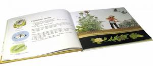 фото страниц Как растут овощи? #2