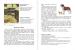 фото страниц Первая после Букваря книга для чтения #4