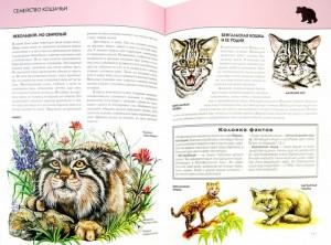 фото страниц Животные. Полная энциклопедия #4