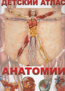 Книга Детский атлас анатомии