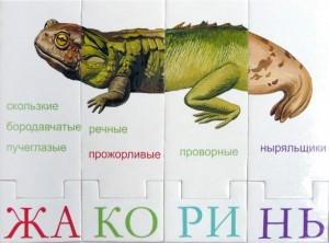 фото Развивающая игра-конструктор 'ЗооЛото' #3