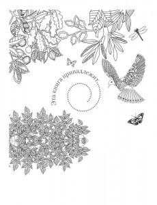 фото страниц Крылья мечты. Медитативная раскраска для взрослых #3