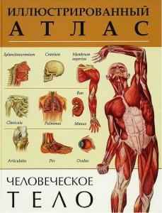 Книга Человеческое тело. Иллюстрированный атлас