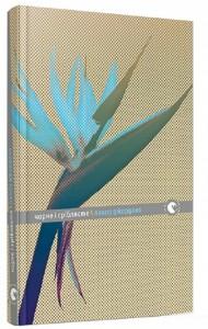 Книга Чорне і сріблясте