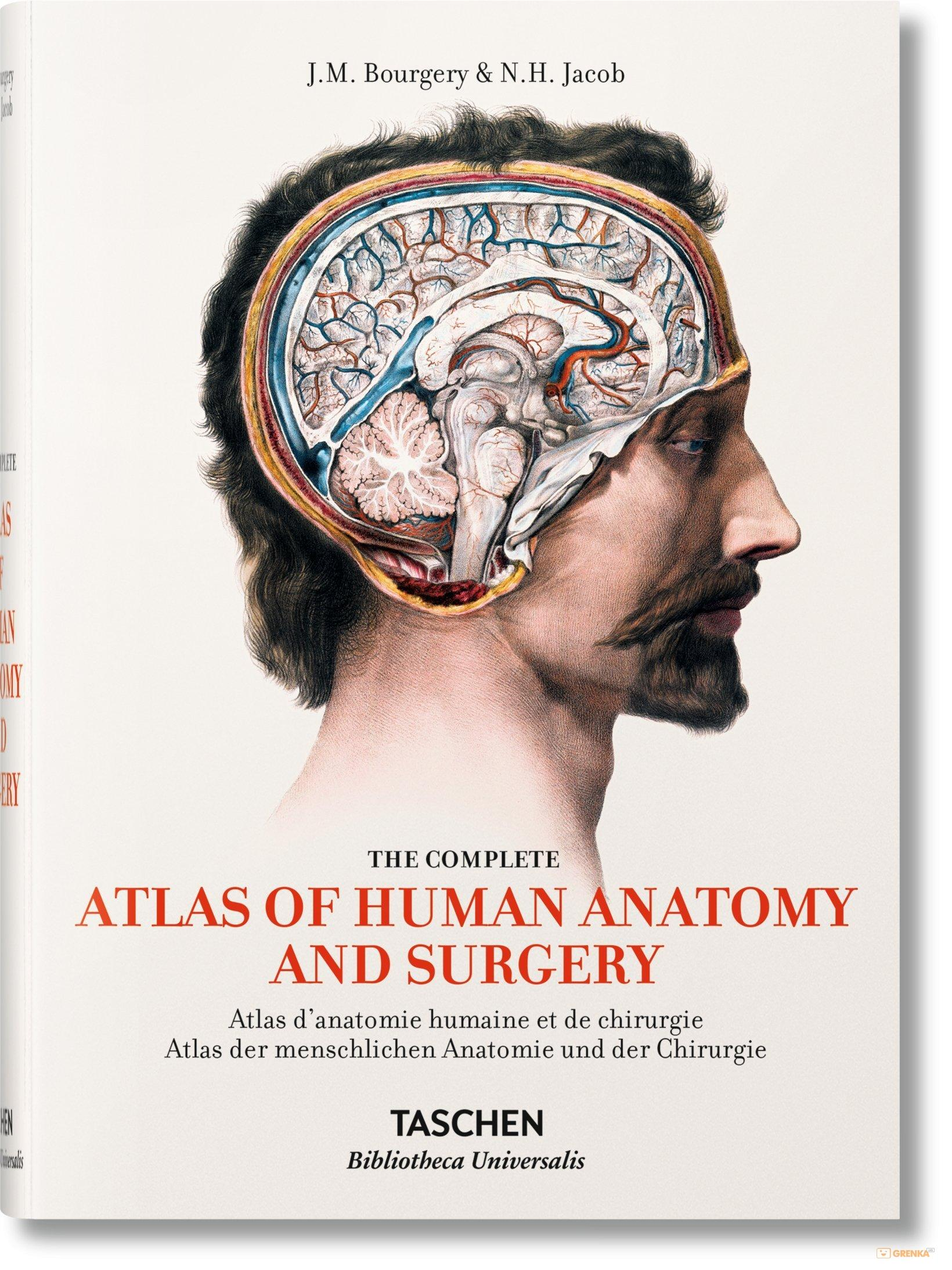 Atlas Of Human Anatomy And Surgery Jean Marie Minor