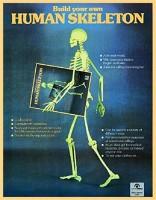 Книга Human Skeleton Model