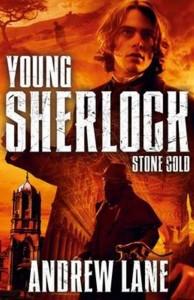 Книга Stone Cold