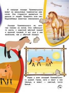 фото страниц Лошади и пони #16