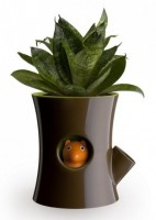 Подарок Горшок с индикатором полива  Qualy 'Log & Squirrel' коричневый/зеленый (QL10075-BN-GN)