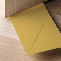 Подарок Стоппер для двери Qualy 'You've Got Mail' коричневый (QL10151-BN)