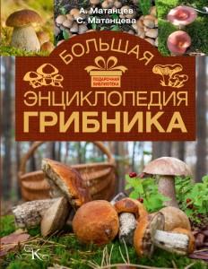 Книга Большая энциклопедия грибника