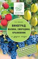 Книга Виноград, малина, смородина, крыжовниик и другие ягоды