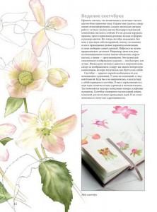 фото страниц Портреты цветов от А до Я. Практическое руководство по рисованию акварелью #6