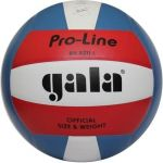 Мяч Gala Pro-Line (BV5211LAE)