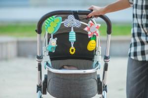 фото Гибкая дуга для коляски Taf Toys 'Тропический оркестр' (12135) #5