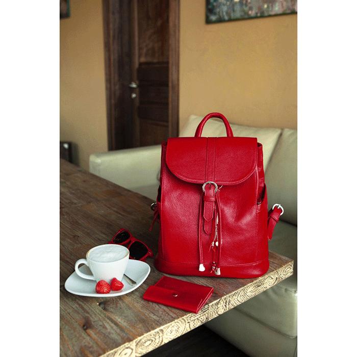 fc875fdf2905 Кожаный рюкзак BlankNote 'Олсен' Рубин (BN-BAG-13-rubin) купить в Киеве и  Украине с доставкой