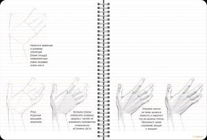 фото страниц Sketchbook. Рисуем человека (зеленый) #2