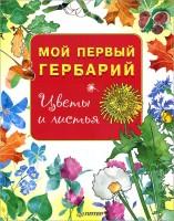 Книга Мой первый гербарий. Цветы и листья