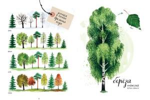 фото страниц Мой гербарий. Листья деревьев #4