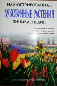Книга Луковичные растения. Иллюстрированная энциклопедия