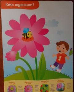 фото страниц Многоразовые развивающие карточки. Лепка для малышей от 1 года до 2 лет #5