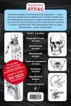 фото страниц Анатомия человека. Компактный атлас-раскраска #6