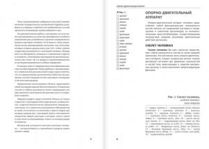 фото страниц Анатомия человека. Компактный атлас-раскраска #3