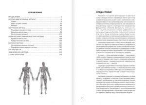 фото страниц Анатомия человека. Компактный атлас-раскраска #2