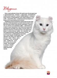 фото страниц Кошки. Большая энциклопедия #3