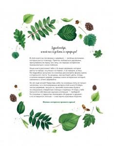 фото страниц Мой гербарий. Листья деревьев #6